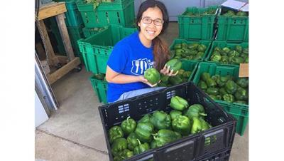 Kendra Oo inspects some gleaned produce during the summer of 2016.